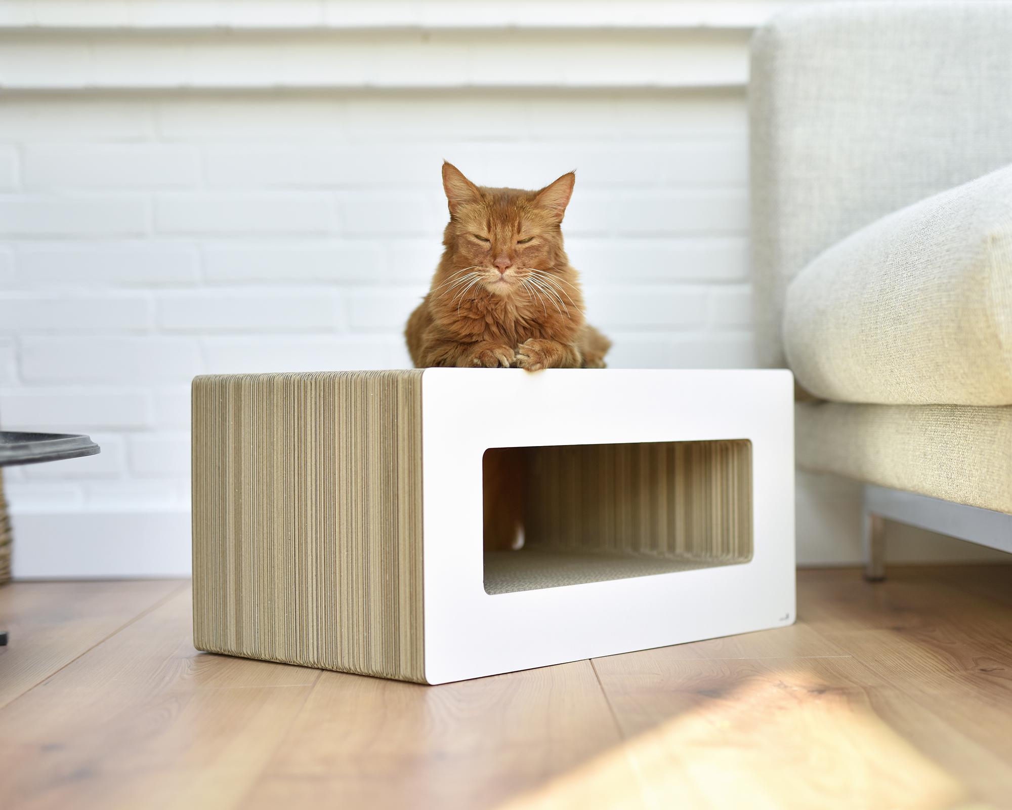 Loop griffoir pour chat
