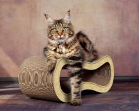 Aperçu: Design Katzenmöbel aus Kratzpappe Singha M - Farbe: sand 005