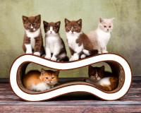 Aperçu: Meuble griffoir Singha M en carton ondulé, coloris blanc-marron 002g