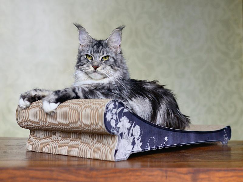 Katzenliege Lounger