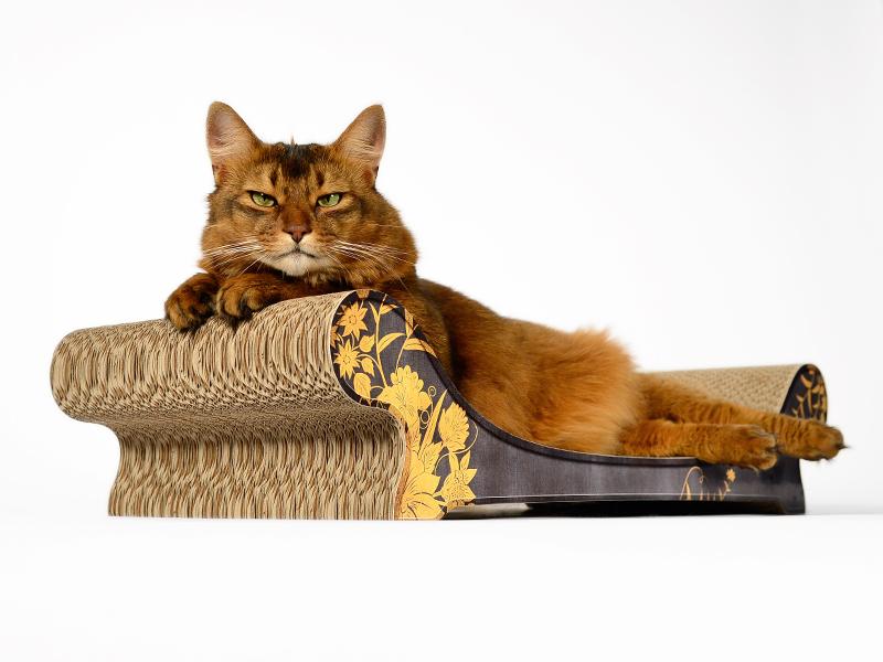 Méridienne et divan pour chats: Le Canapé pour chat