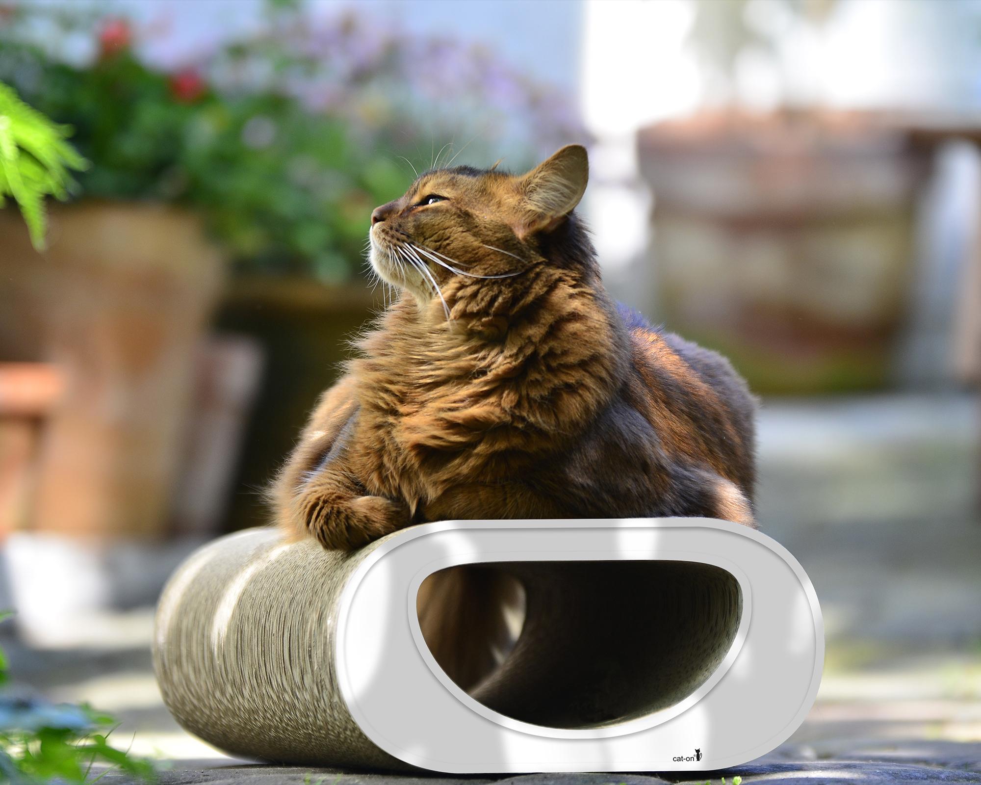 Le Tunnel grattoir chat