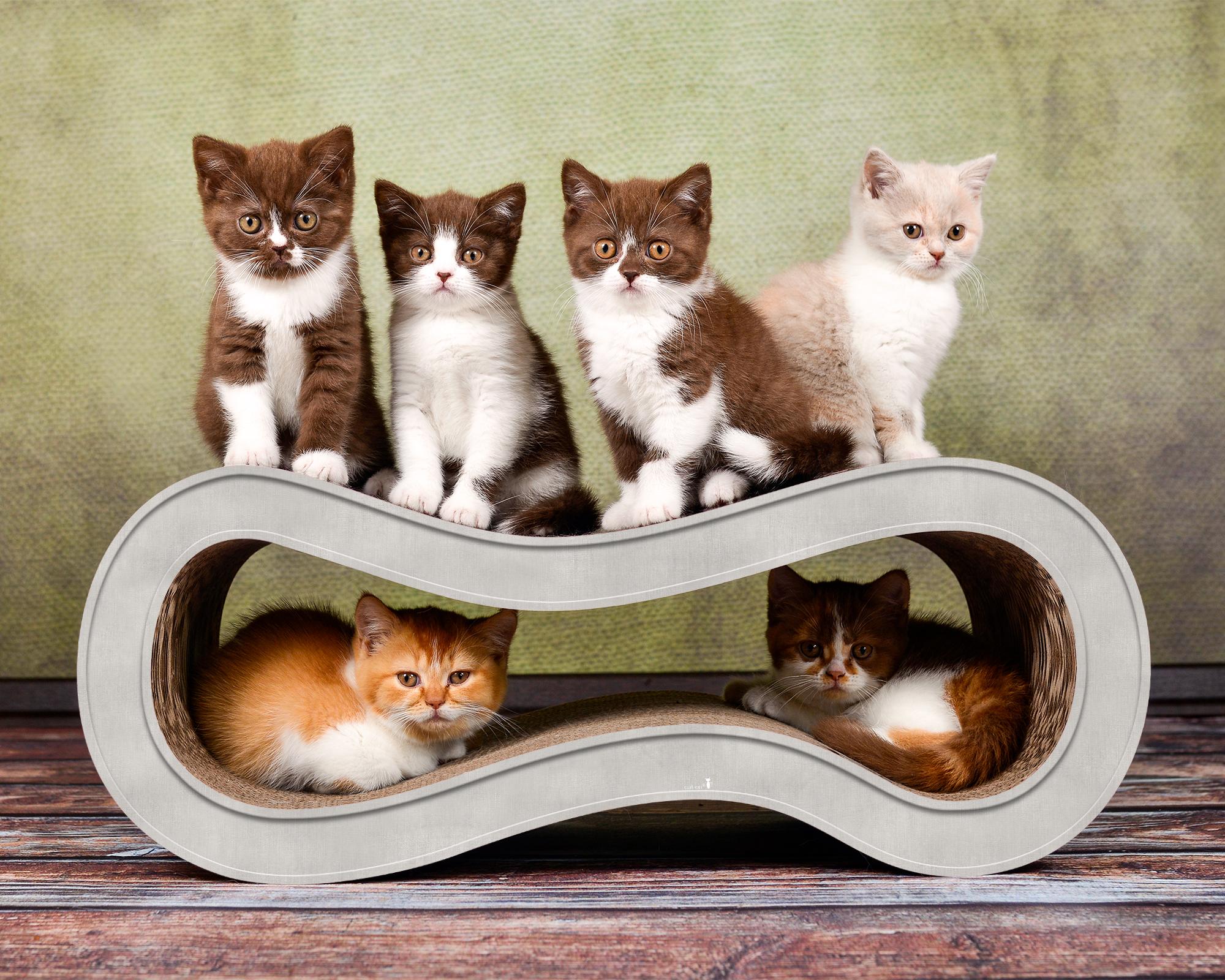 Griffoir design pour chats Singha M - couleur: gris