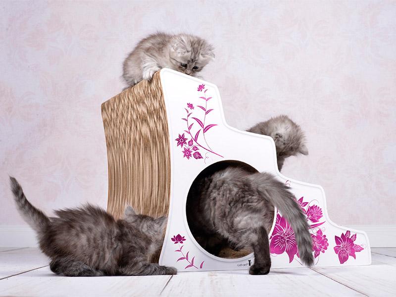 L'escalier anti-dérapant pour chats de toute âge ou handicapés