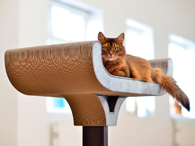 Arbre à chat Corbeille - éléments griffoirs en carton ondulé ultra-résistant