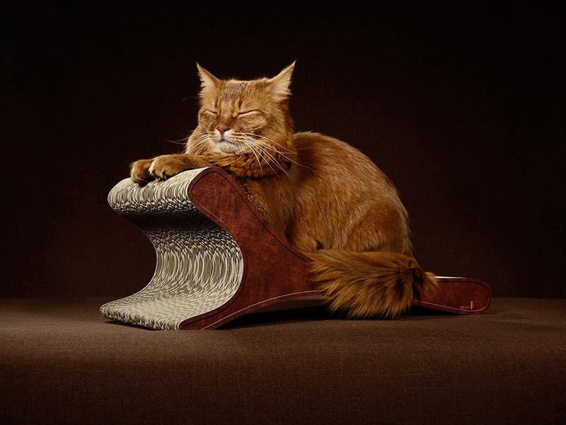 Kratzmöbel für Katzen Feline in braun antik