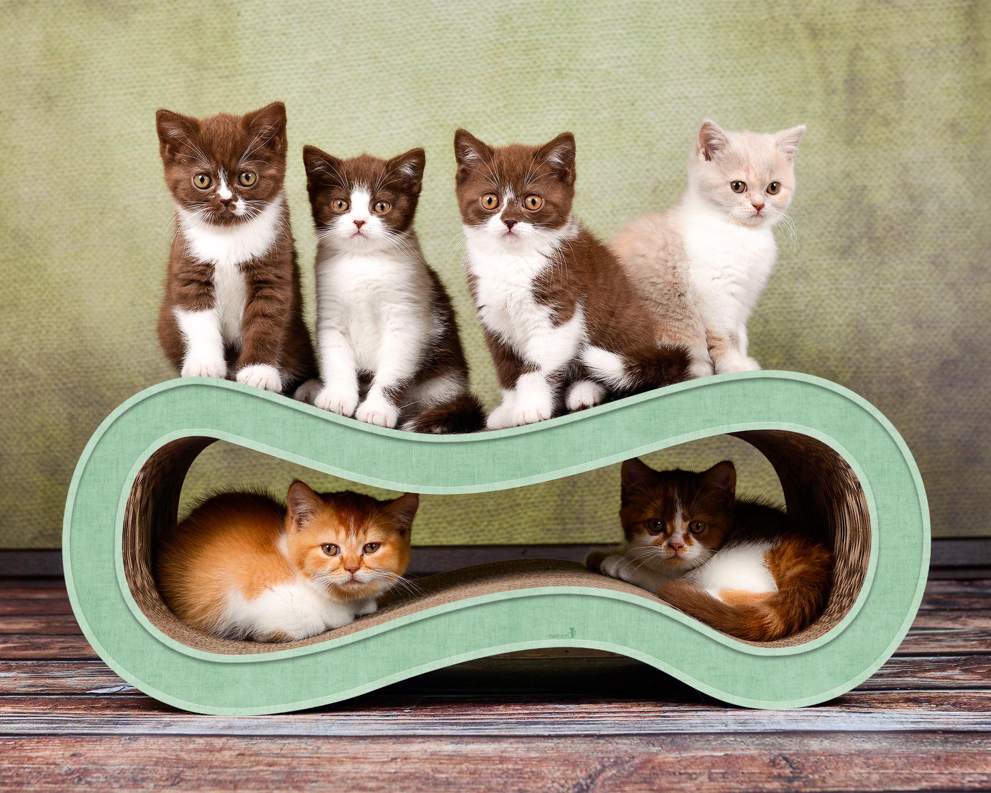 meuble en carton griffoir pour chat en vert-menthe