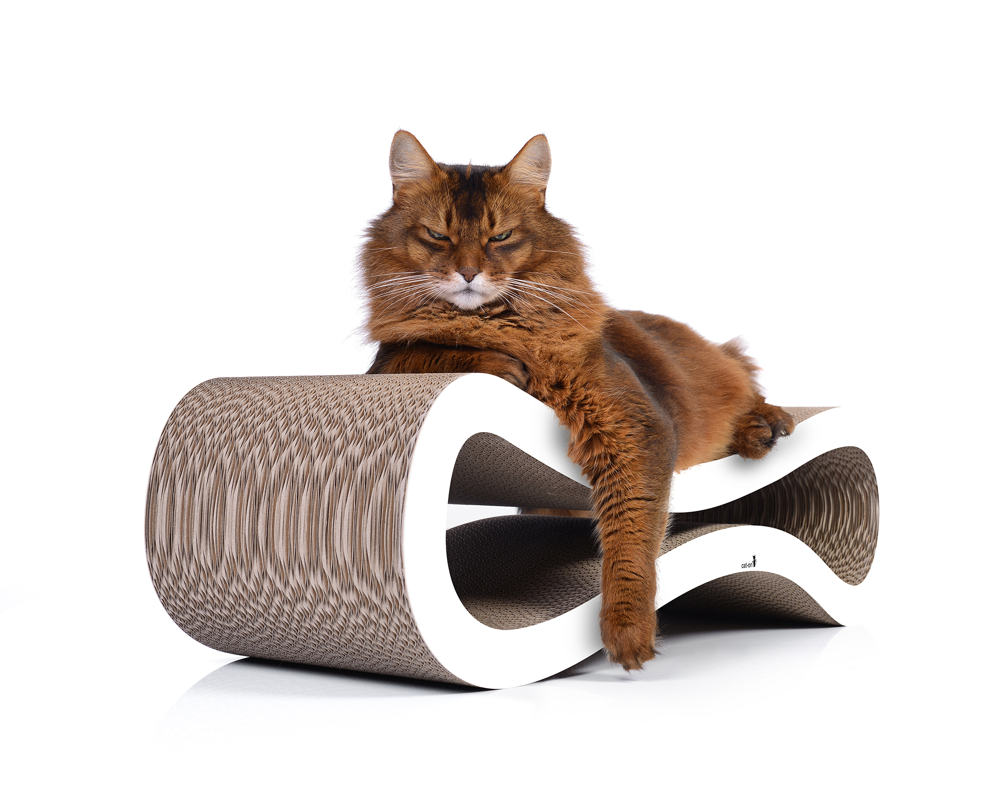 Griffoir design pour chat Cat Racer
