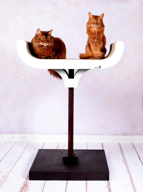Arbre à chat Corbeille en blanc