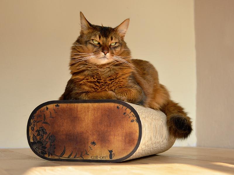 Griffoir en carton ondulé à chat cat-on La Banquette