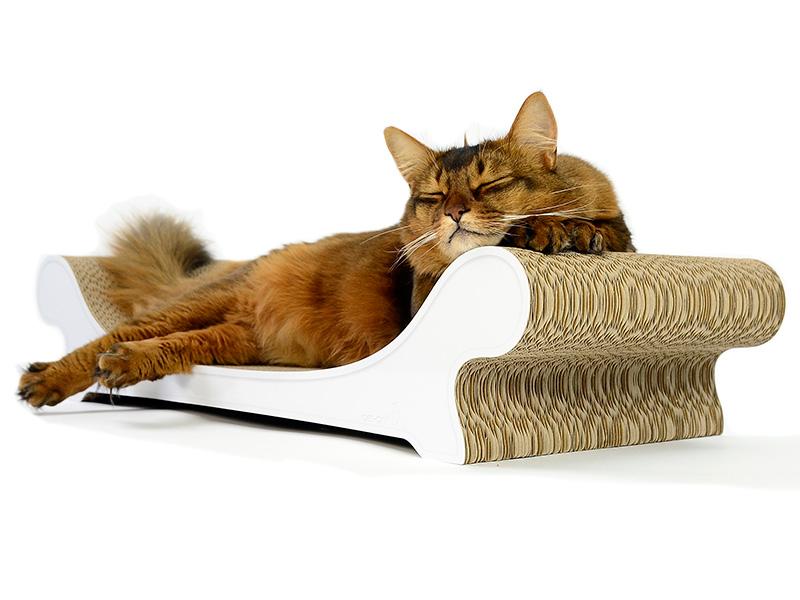 Grattoir canapé pour chat