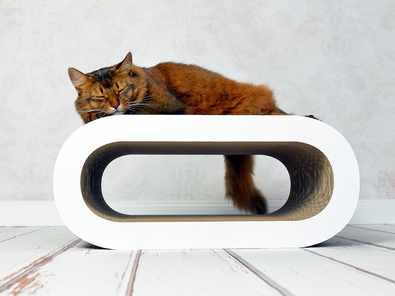 Katzenmöbel aus Wellpappe Le Maitre 000x
