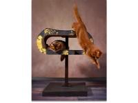 Arbre à chat cat-on Arbor | Arbre à chat en bois massif et avec élément griffoir en carton ondulé