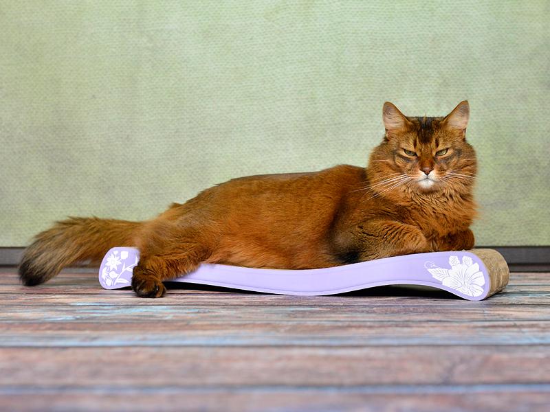 Grattoir, griffoir pour chat cat-on La Ola