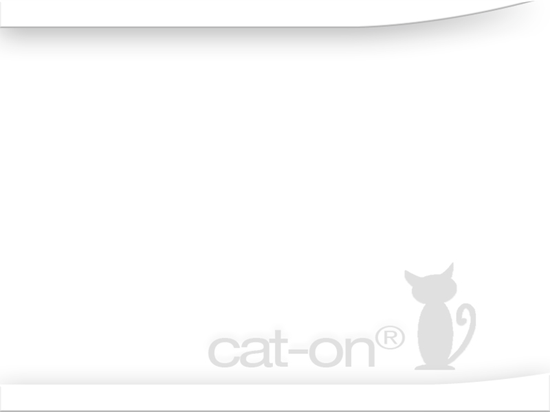 cat-on griffoirs en carton en blanc