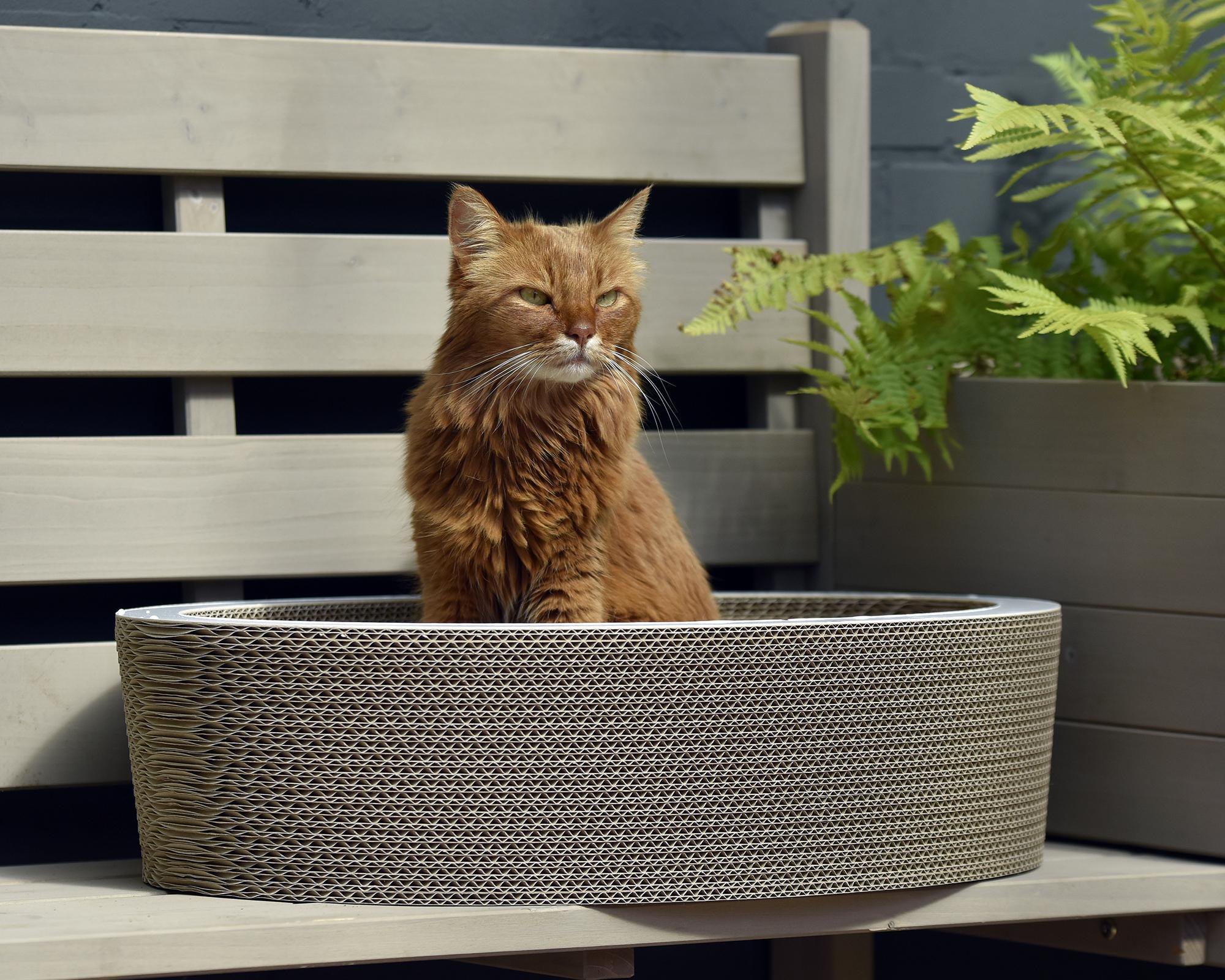 Lovale corbeille à chat