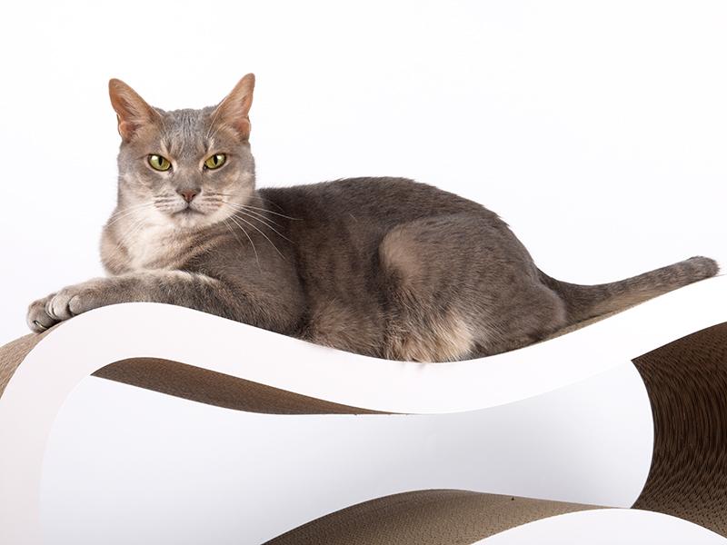 cat-on Singha L   grand griffoir en carton ondulé pour chats