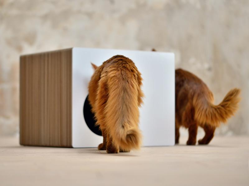 Griffoir maison en carton ondulé pour chats