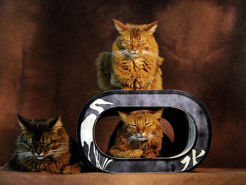 Le Tronc - mobilier griffoir pour chats