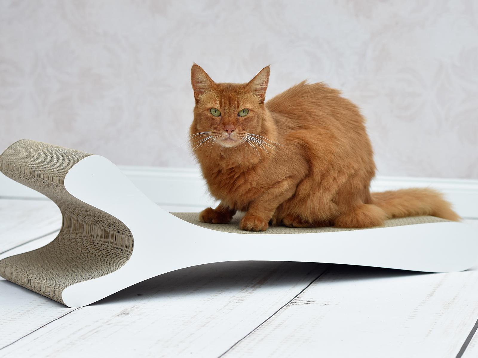 Designer Kratzmöbel für Katzen Feline XL