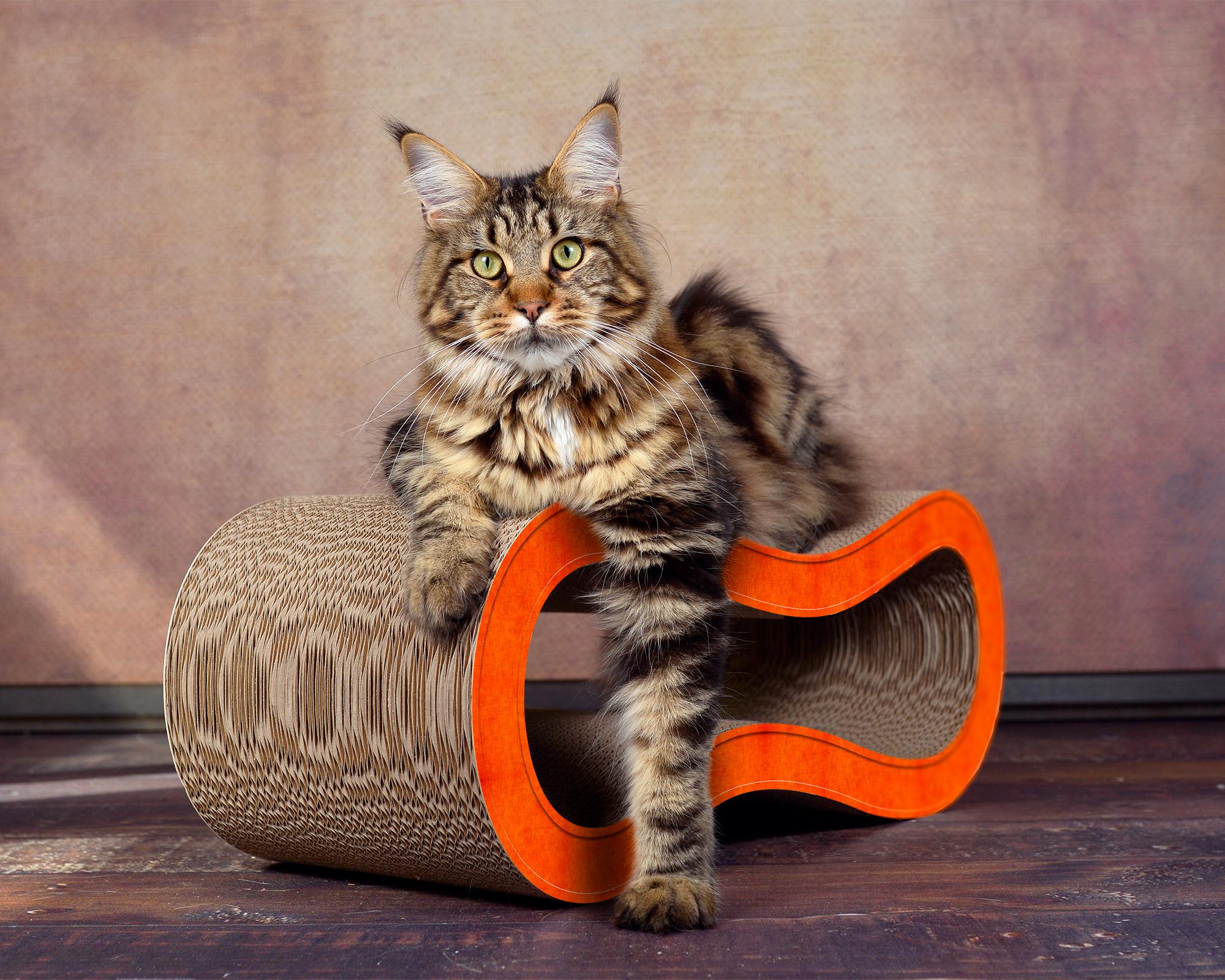 Griffoir pour chat Singha M couleur orange