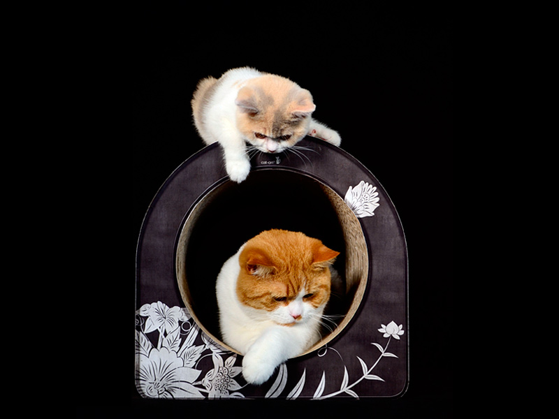 tunnel griffoir pour chats en carton ondulé