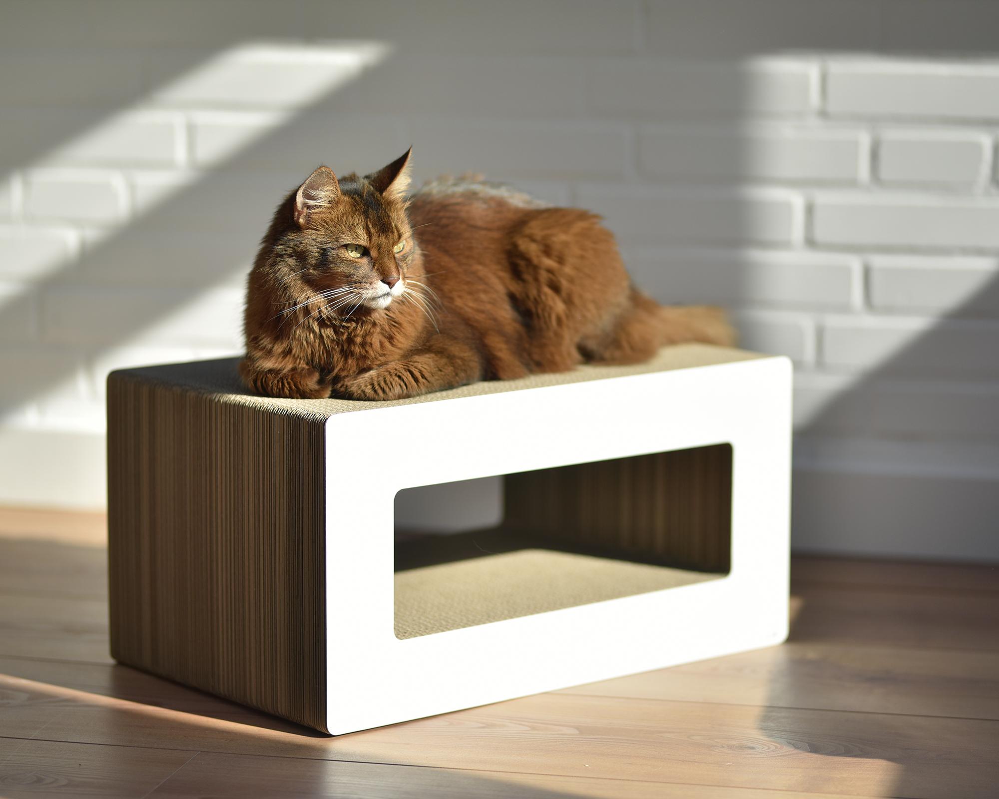 Griffoir pour chat LOOP fabriqué en Allemage