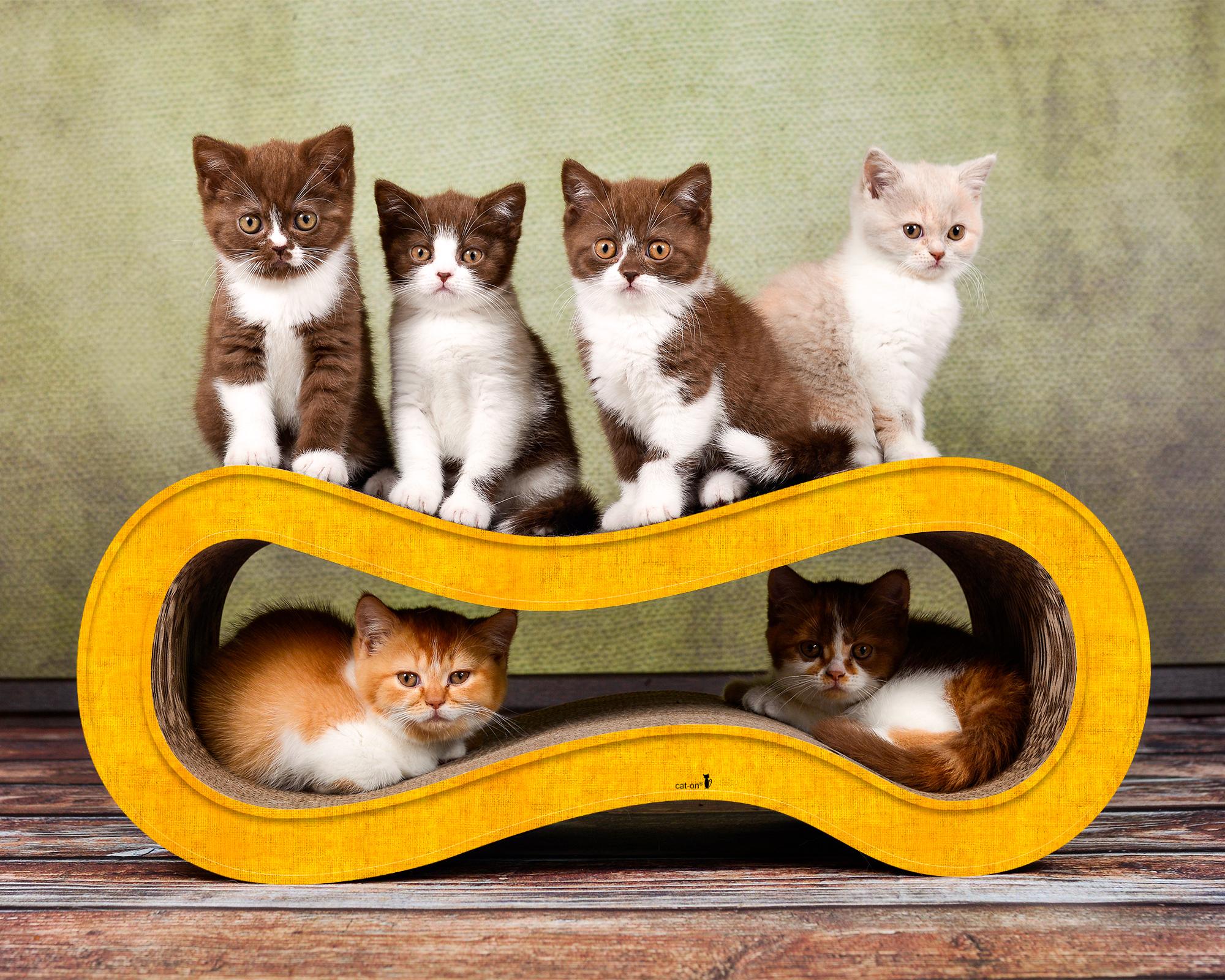 Griffoir en carton pour chats Singha M - couleur jaune fonçé