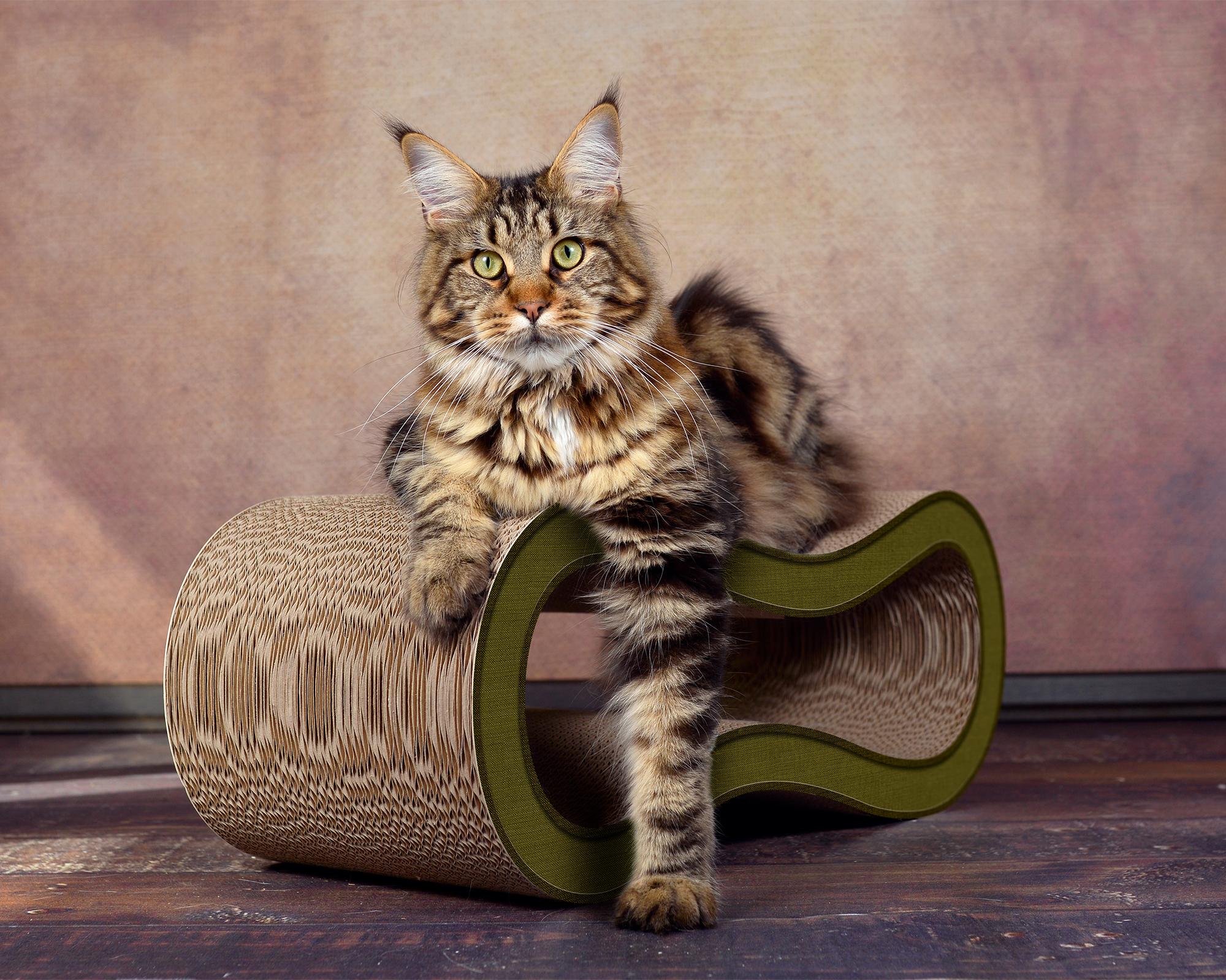 oliv-grüner Kratzbaum für Katzen aus Wellpappe Made in Germany
