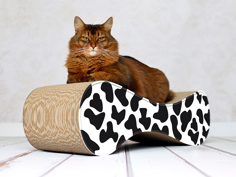 Canapé pour chats en carton | le griffoir design cat-on Le Ver