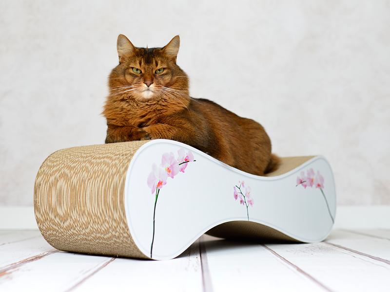 Griffoir en carton Le Ver pour chats - qualité allemande