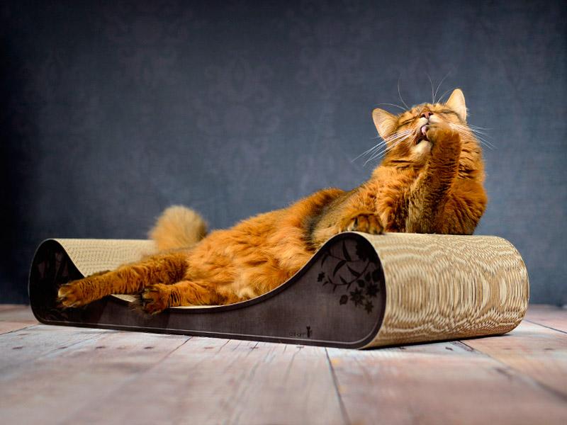Canapé pour chat Le Divan | méridienne à chat