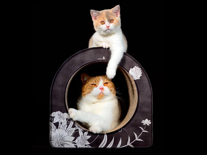 griffoir design Le Tube L en carton pour chats