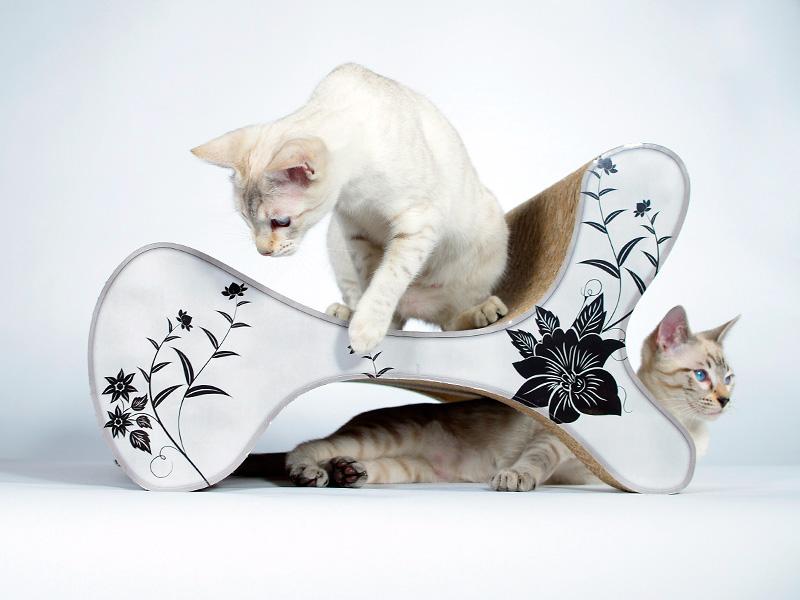 Fauteuil design & griffoir pour chats | Molecular Fauetuil