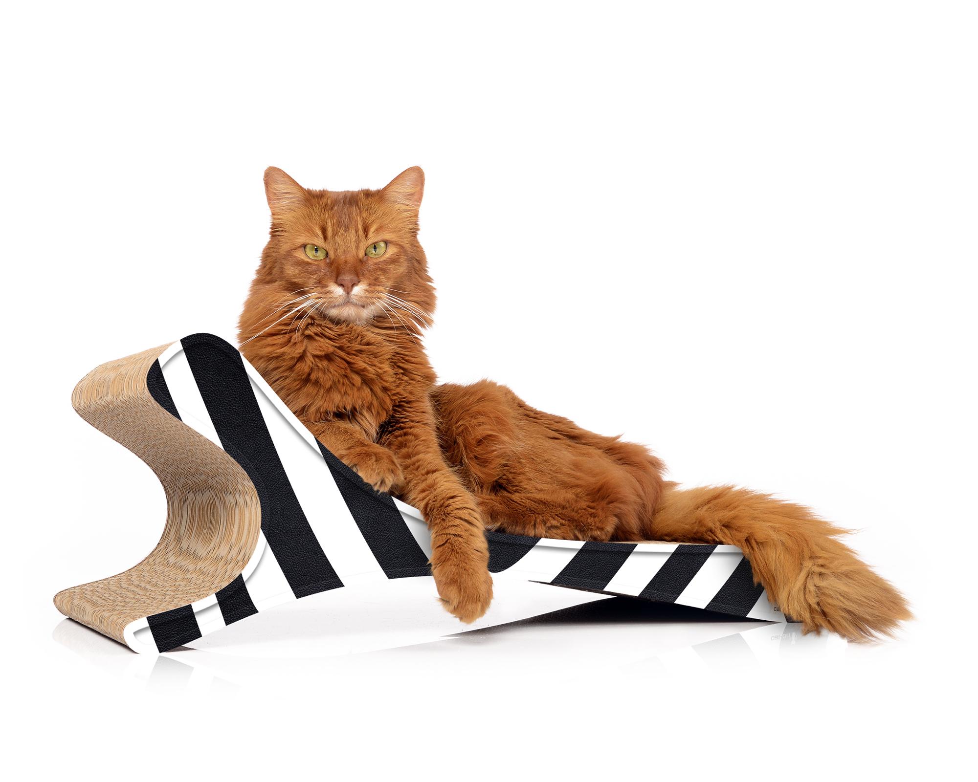 Griffoir en carton Feline - zèbre