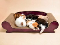 Aperçu: Divan Vertige |méridienne et canapé pour chats |griffoir