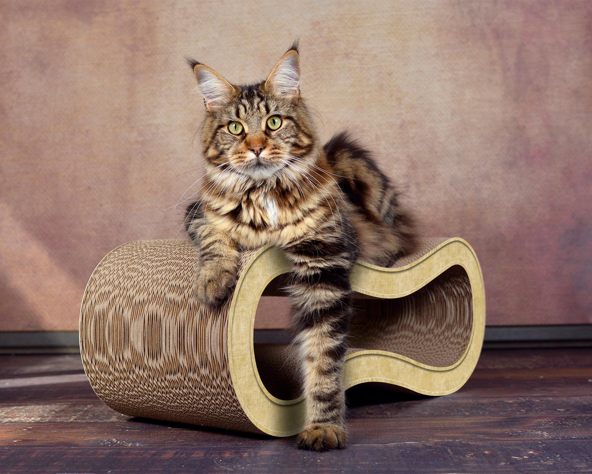 Design Katzenmöbel aus Kratzpappe Singha M - Farbe: sand 005