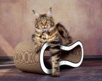 Aperçu: Grand griffoir pour chat design Singha M en blanc aux fleurs grises